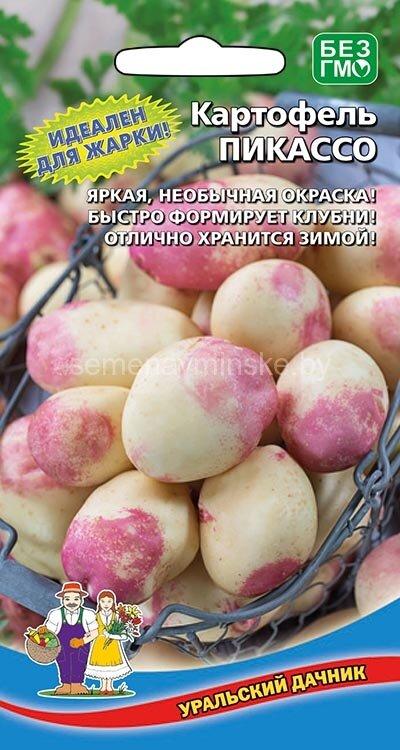 как подготовить семена картофеля